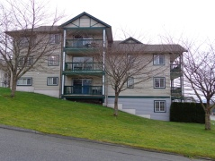 301-5701 Willow